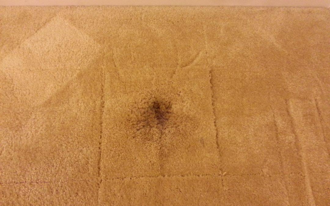Carpet Repair Columbia Maryland
