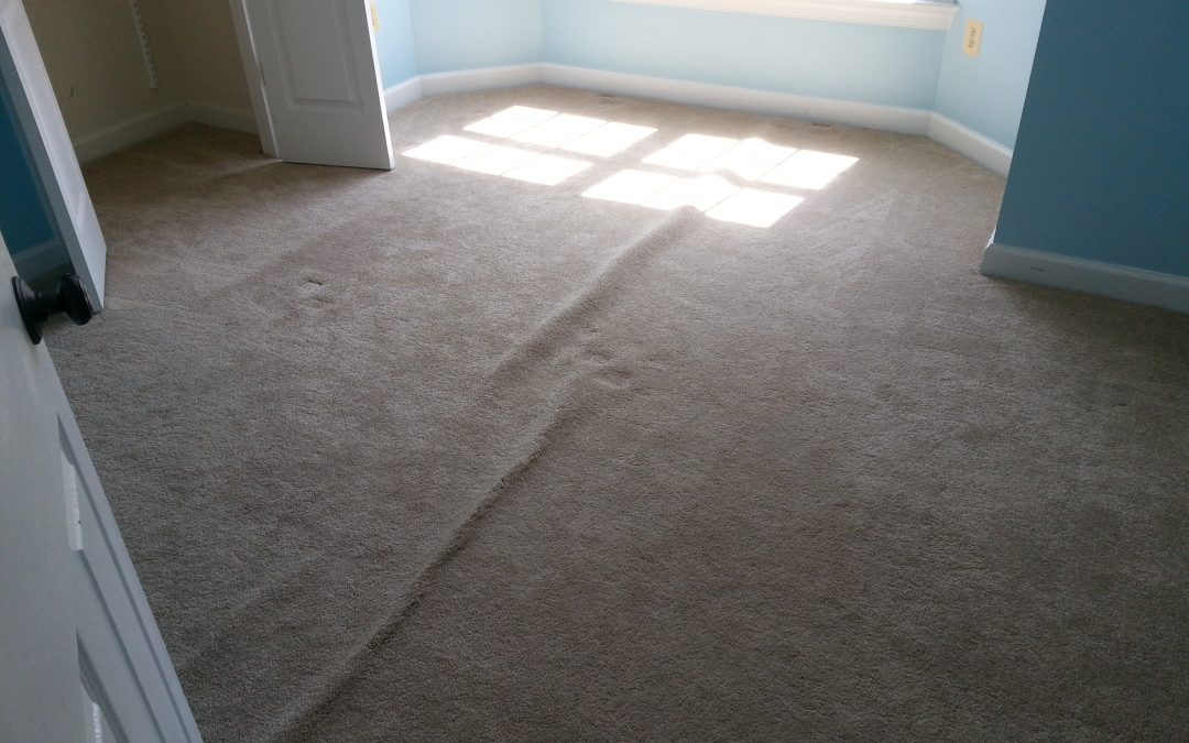 Carpet Bumps and Cleaning Gaithersburg Maryland
