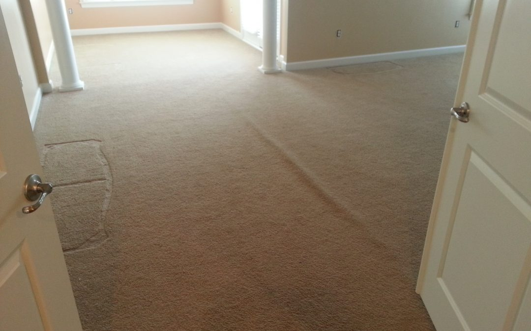 Carpet Repair and Cleaning Rockville Maryland
