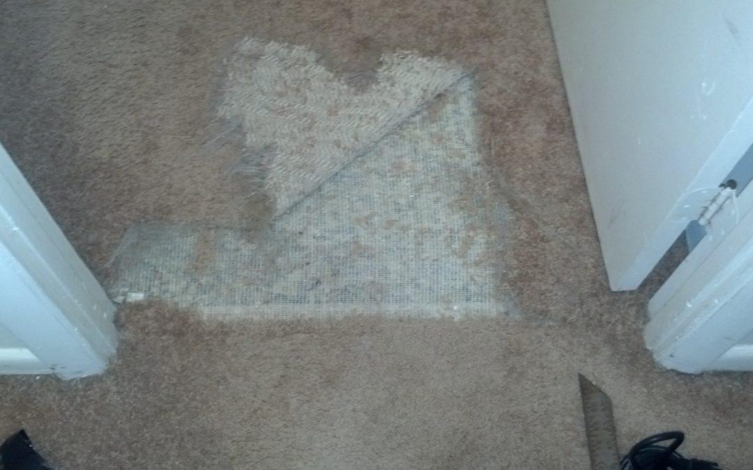 Carpet Repair Gaithersburg Maryland