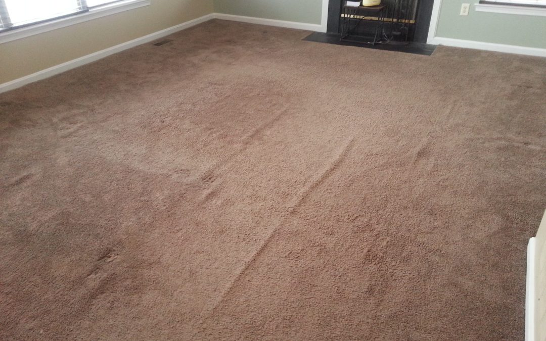 Carpet Repair and Stretching Bowie Maryland