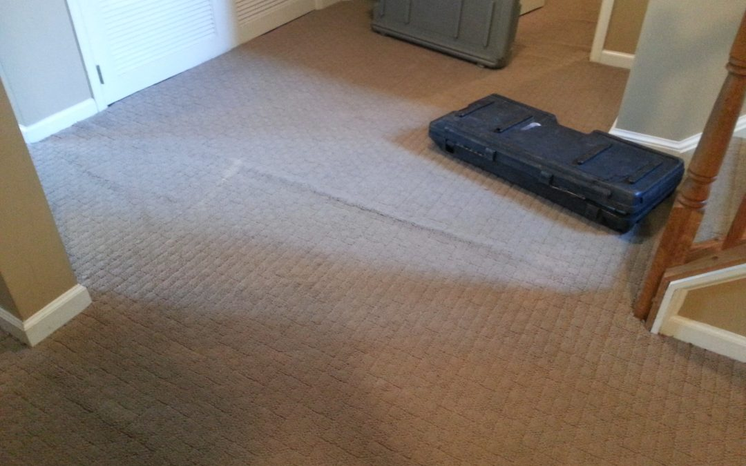 Carpet Stretching and Repair Rockville Maryland