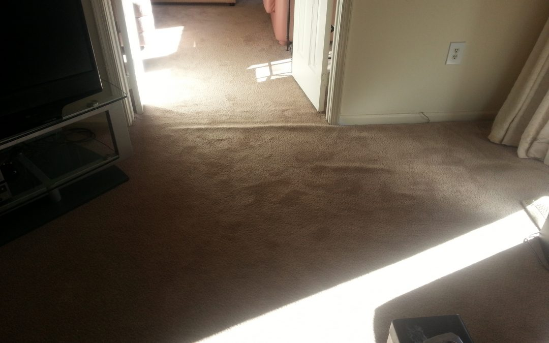 Carpet Stretching Columbia Maryland