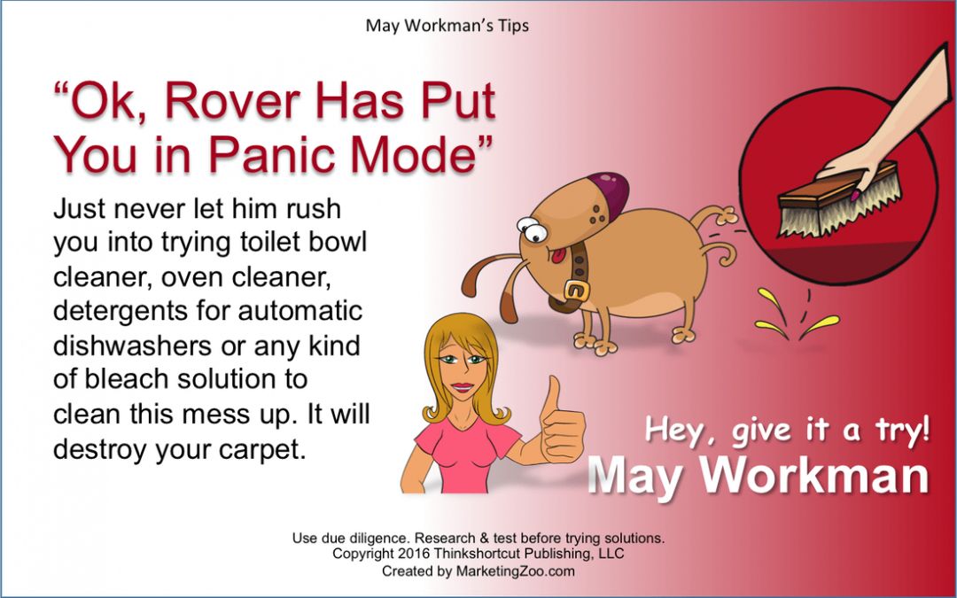 Maryland Carpet Repair – Silver Spring Carpet Cleaning