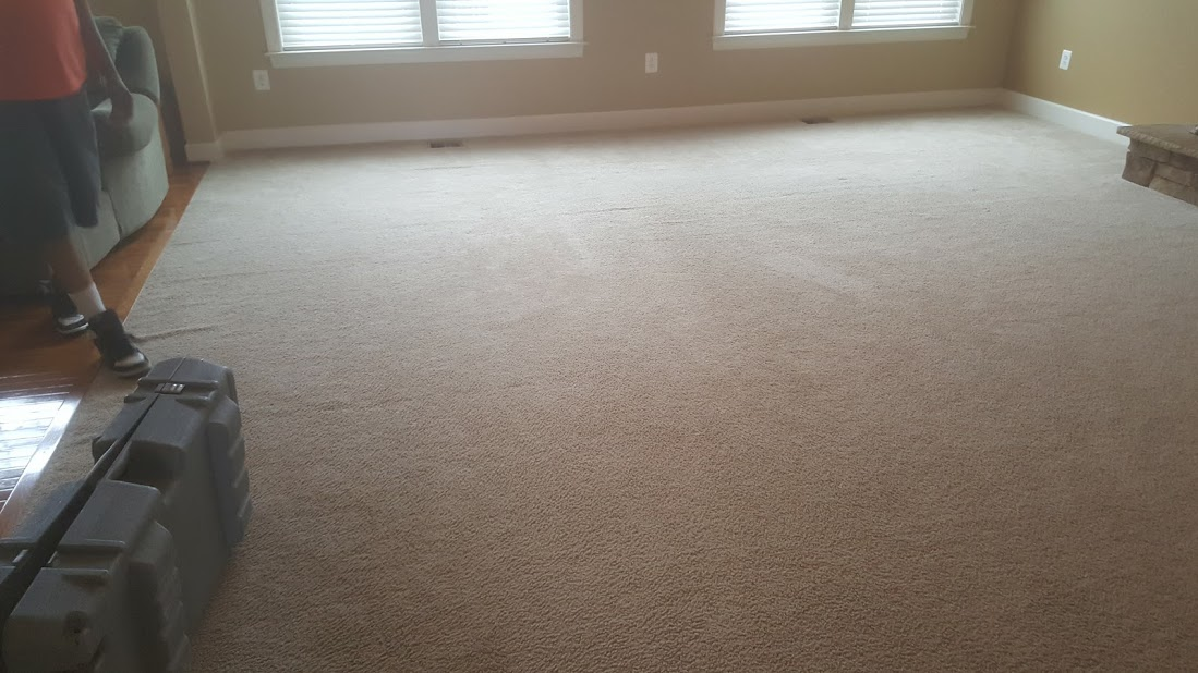 MD Carpet stretching and cleaning