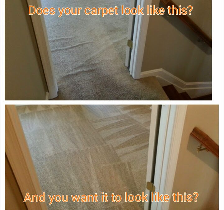 Carpet Repair Services Near Me