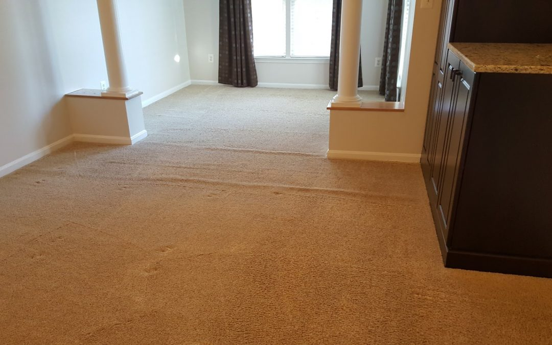 carpet stretching and repair odenton