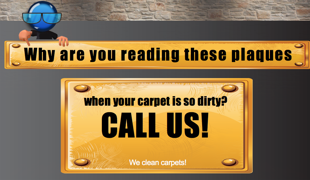 Maryland Carpet Repair and Cleaning Carpet Cleaning