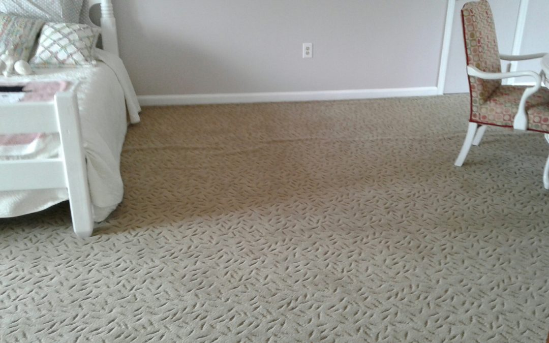 Rockville MD Carpet Stretching