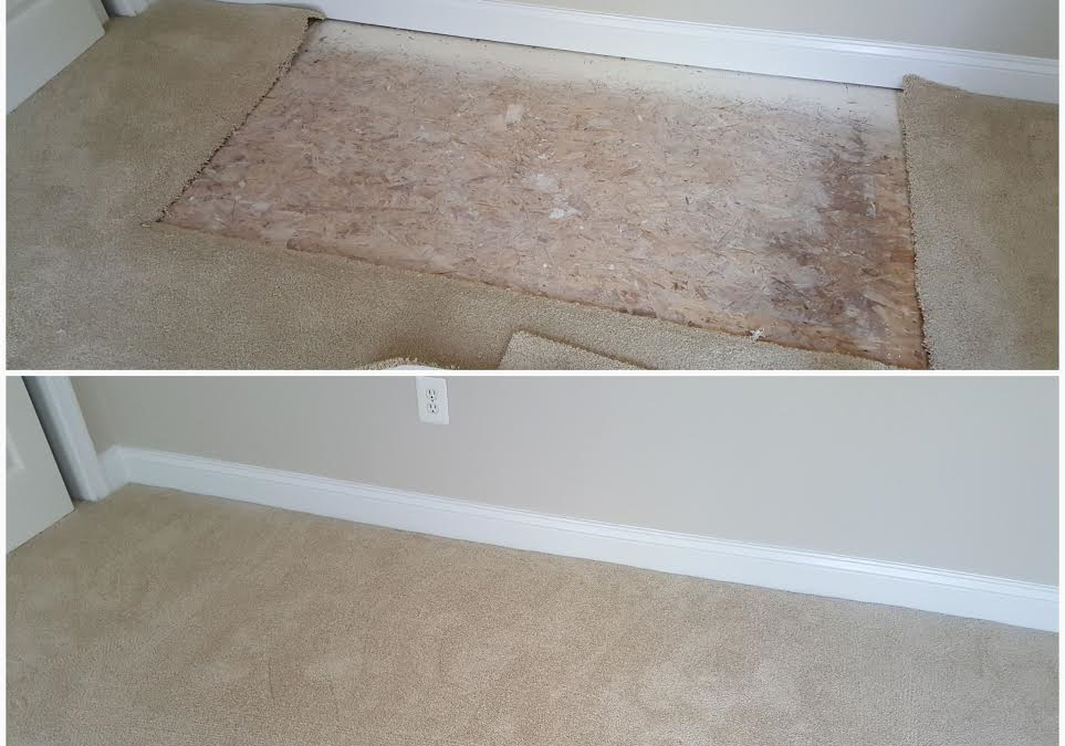 Carpet Repair Potomac MD