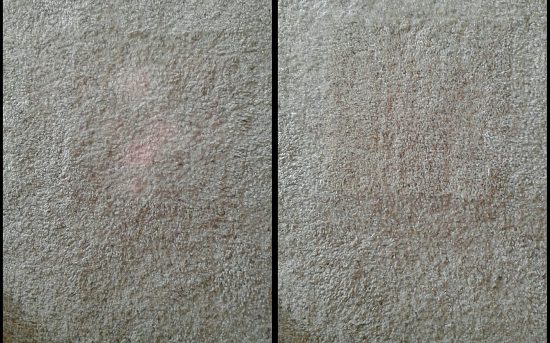 Carpet Stain Repair Bethesda MD