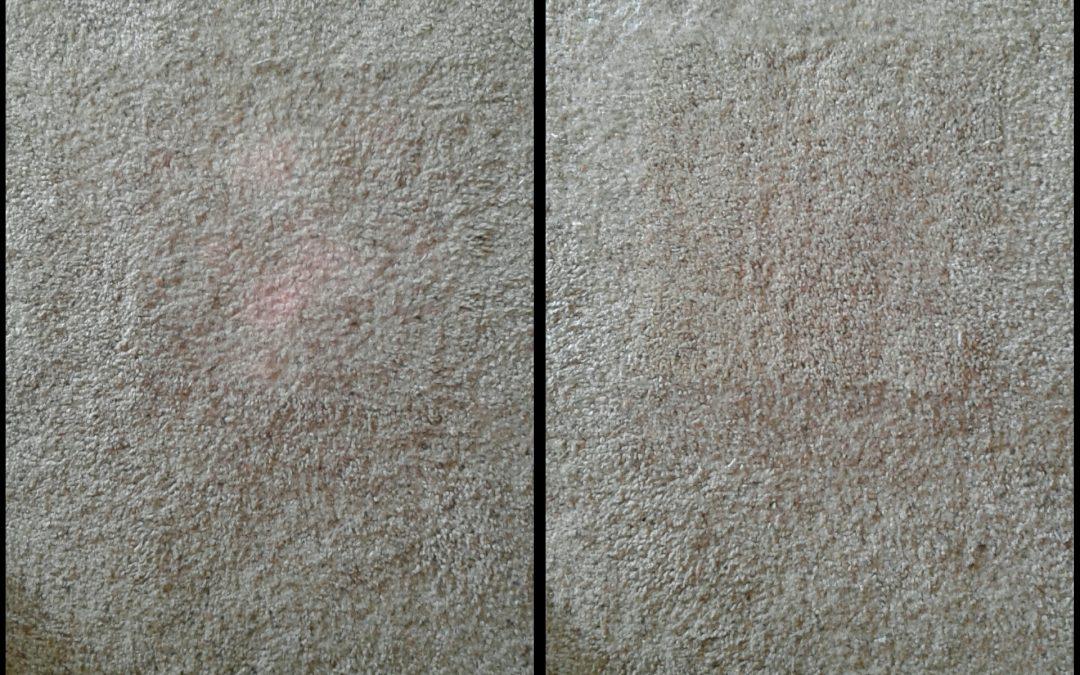 Carpet Stain Repair Bethesda MD