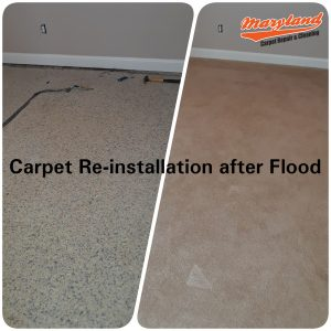 Carpet Reinstallation after Flood Silver Spring MD