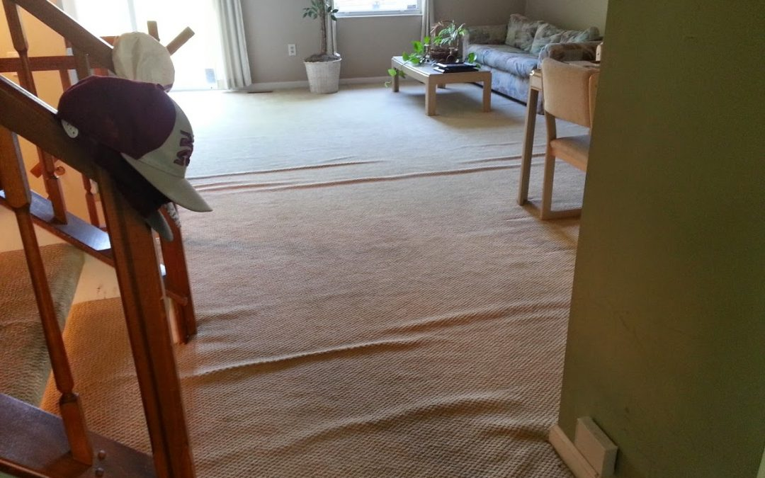 Crofton MD Carpet Stretching