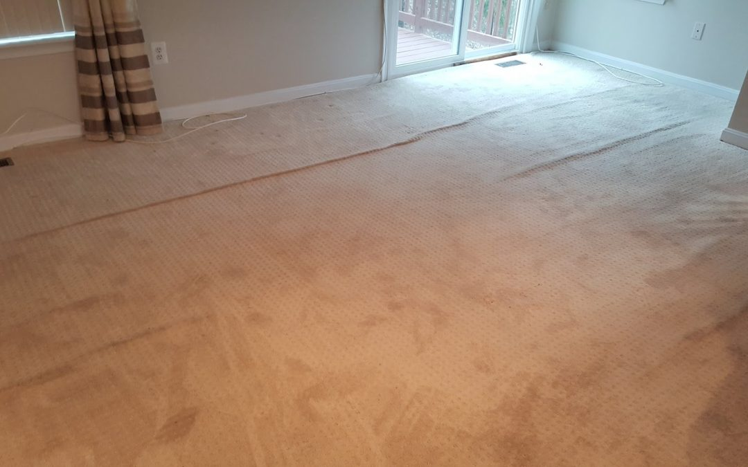 Maryland Carpet Stretching Upper Marlboro MD