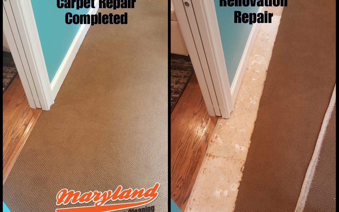 Maryland Carpet Repair- Garrett Park- Kensington- Bethesda
