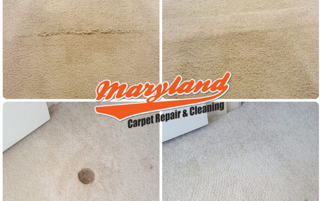 Maryland Carpet Repair