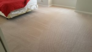 Carpet Ripples, restretching, and cleaning maryland