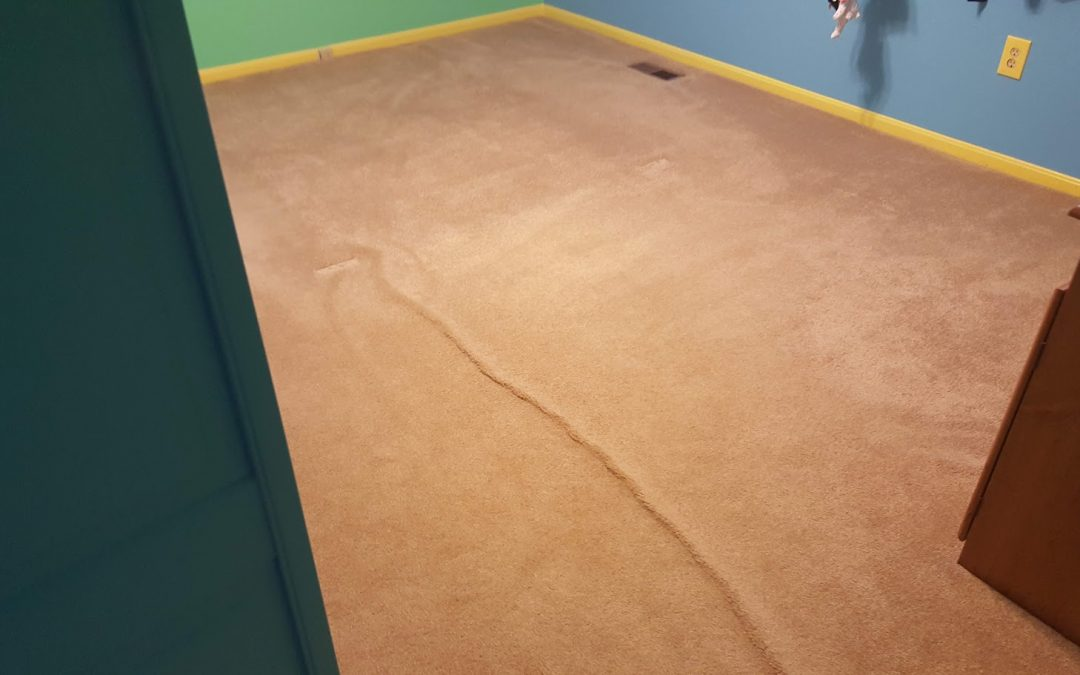 Carpet Stretching in Maryland