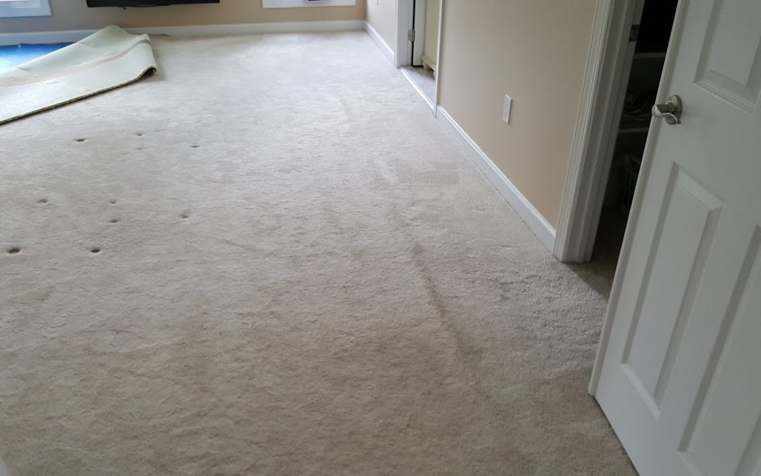 Carpet Repair and Stretching in Damascus MD