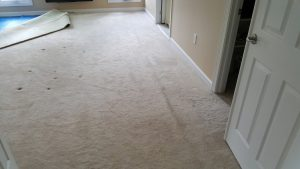This picture is of a carpet repair and stretching job we completed in Damascus MD