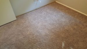 Carpet Repair and Reinstallation in Odenton MD
