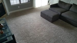 Gaithersburg MD Carpet Stretching and Repair