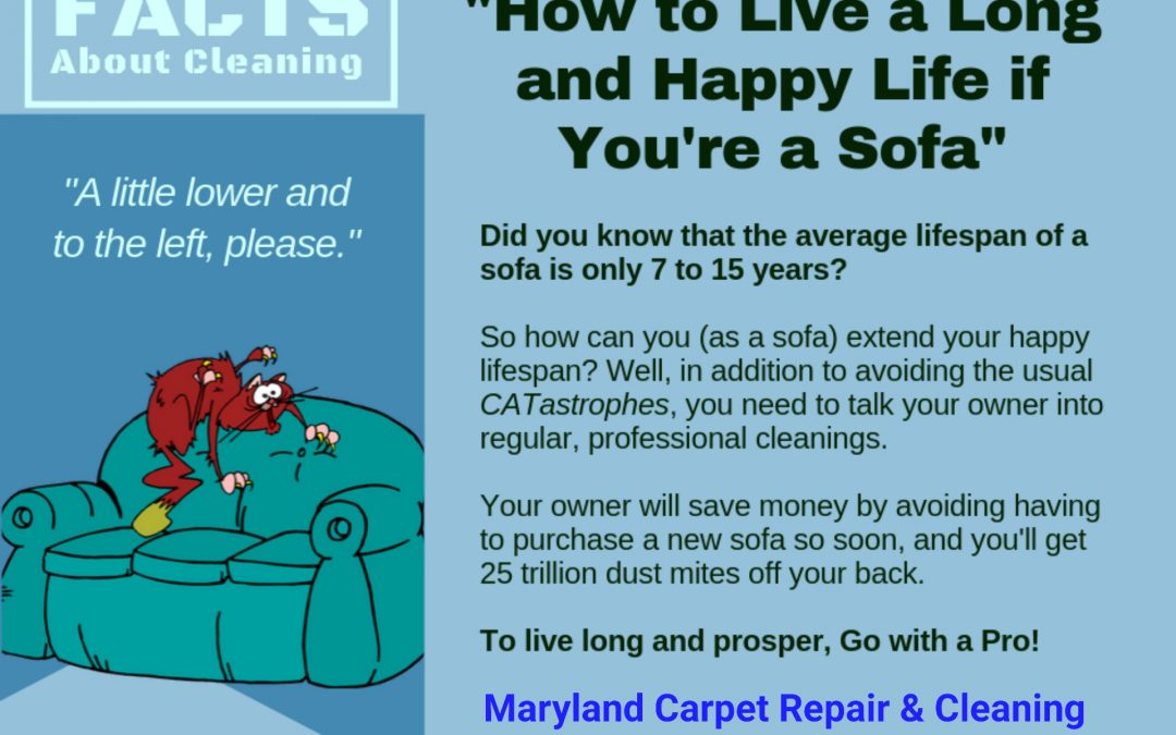 Gaithersburg MD Carpet Stretching and Cleaning