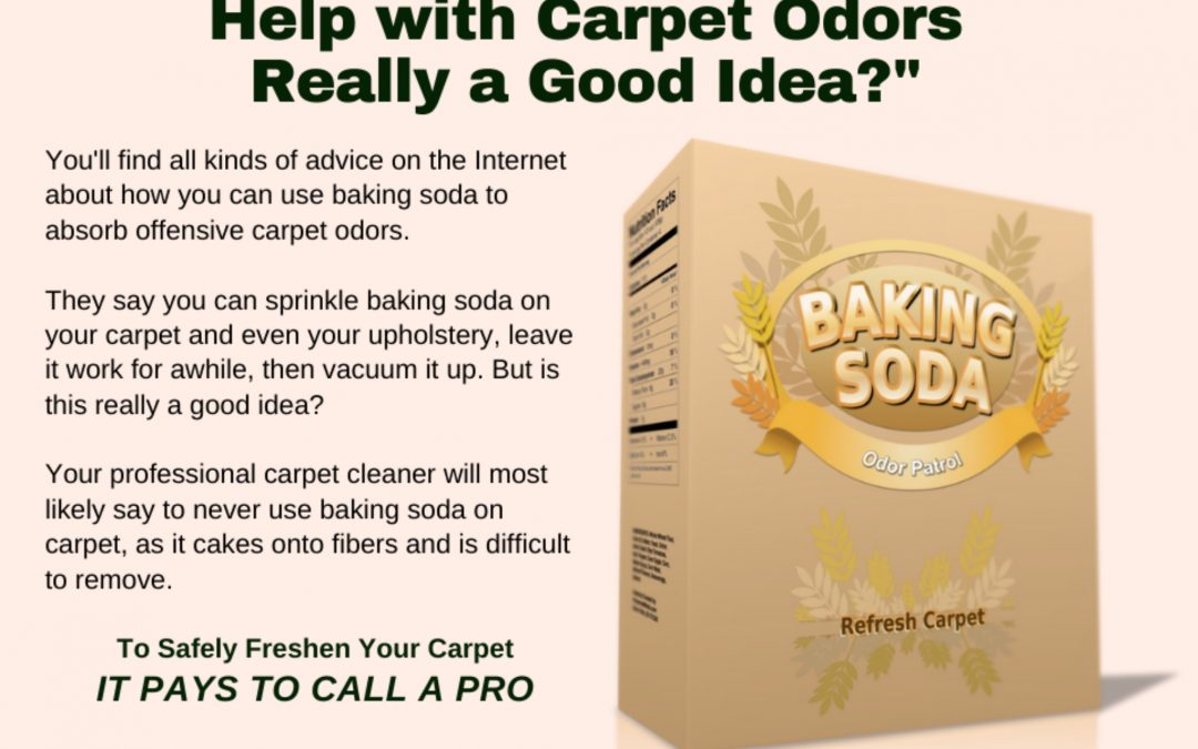 Maryland Carpet Repair and Cleaning – Carpet Odors